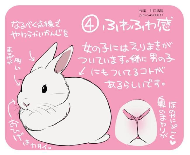 Pin by Douglas Clarke on BUNNY CARTOONS | Pinterest | Bunny, Rabbit ...