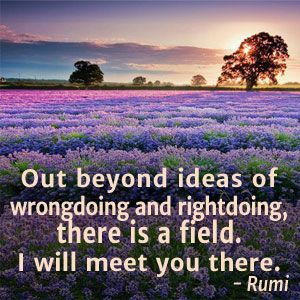 Image result for rumi field meet you there