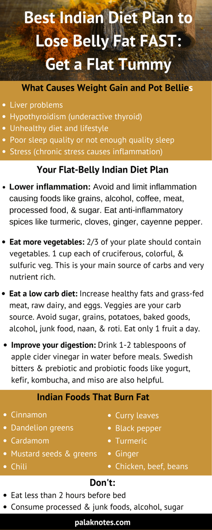 fat burning diet plan indian