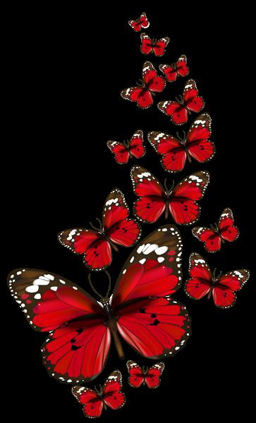 Red Butterflies Vector Png Clipart Butterfly Pictures Butterflies Vector Red Butterfly