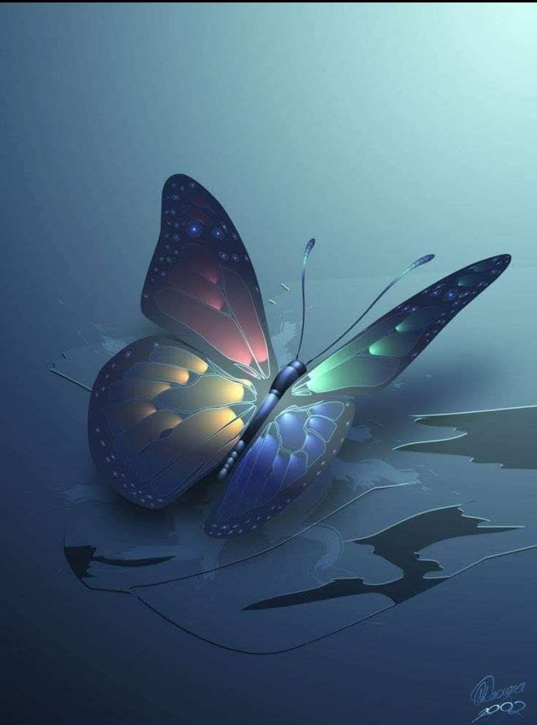 الفراشات لا تعرف ألوان أجنحتها ولكن أعين البشر تعرف مدى روعتها أنت لا تعرف Butterfly Wallpaper Butterfly Wallpaper Backgrounds Butterfly Pictures