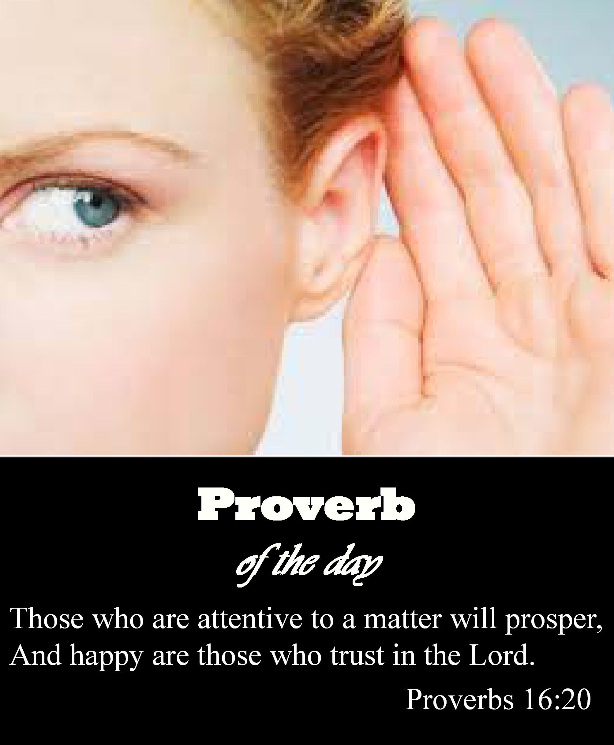 Proverb Of The Day On Pinterest