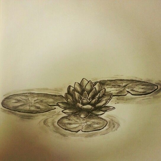 Pin By Inx N Art On Tattoo Art Sketches All Pieces And Pics Are Done By Me Unless Otherwise Stated Thank You For Taking A Look Water Lily