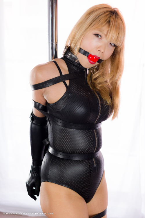 Restricted Senses Update  Mina Is Looking Devastatingly Sexy In A Black Perforated Bodysuit Metal Plater Collar Elbow Length Wet Look Gloves