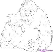 Bigfoot Coloring Page Drawings Orangutan Sketches