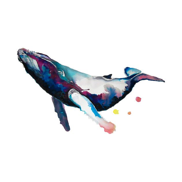 Humpback Whale Nautical Print Limited Edition Archival Art Print in Various Sizes Digital Art Andrea/'s Whale Ocean Art