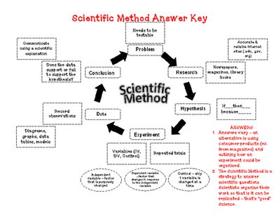Steps of the Scientific Method (cut & paste) Activity | Biología ...