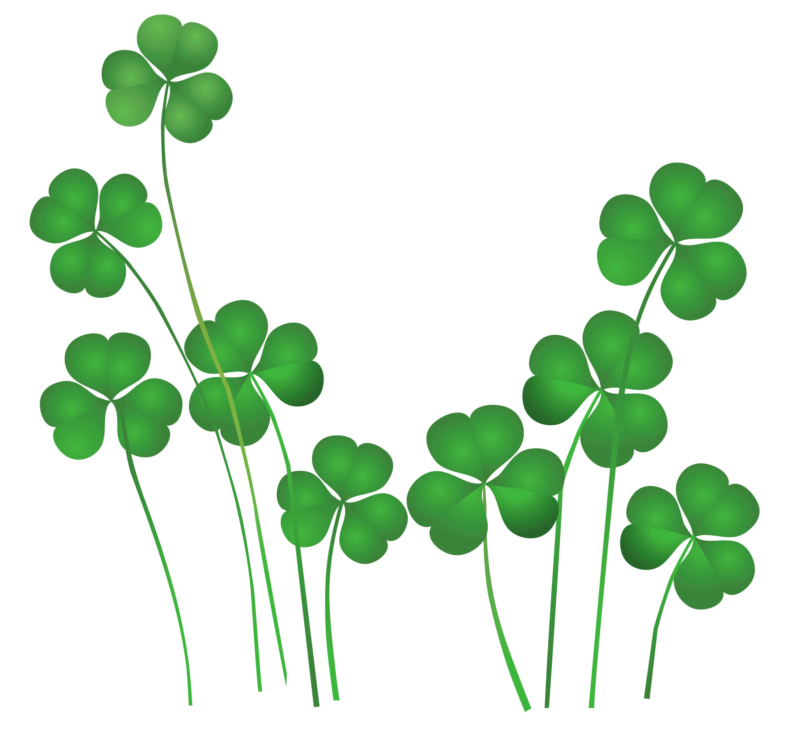 st patrick s day weekend news center st patrick s day