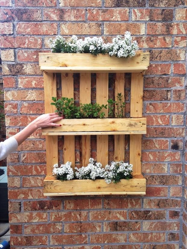 25 amazing uses for old pallets desperdicio de agua for Jardin vertical con palets