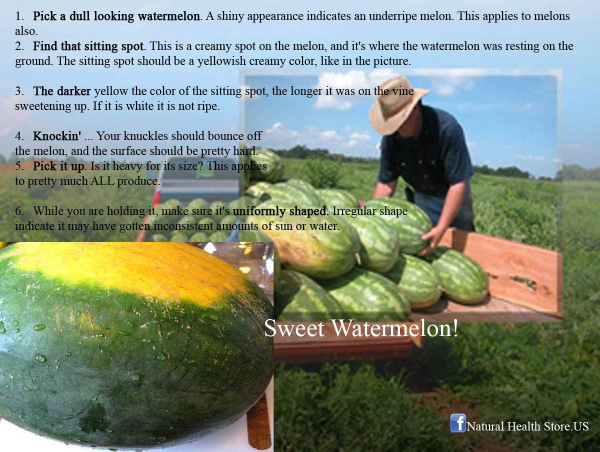 How to choose a sweet watermelon naturalnatures