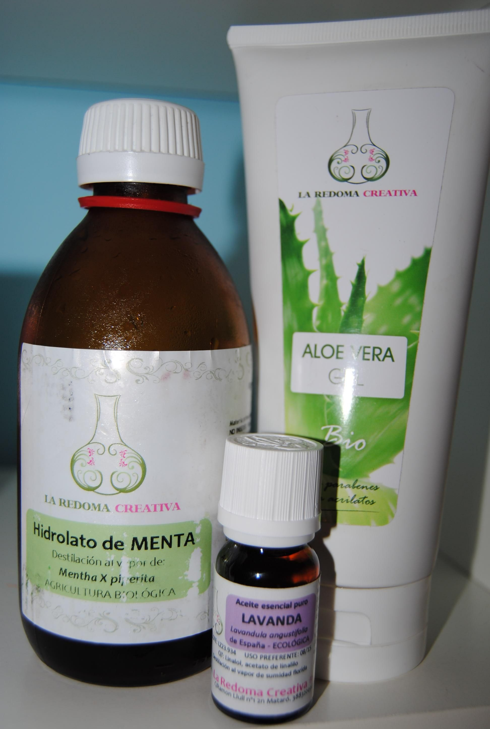 Aloe Vera Essen Kit Para Elaborar Un After Sun Rápido Y Efectivo Gel De Aloe Vera