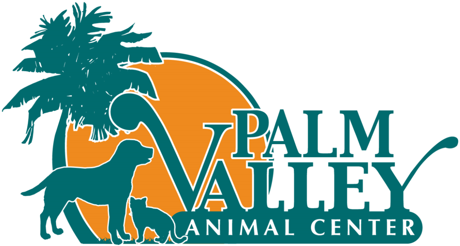 Edinburgh Tx 956 Pets Needing Adoption Palm Valley Animal Center Animal Society Palm Valley Service Animal