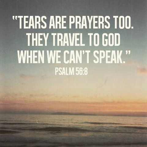 Biblical Quotes Image Result For Biblical Quotes About Peace  Spiritual  Pinterest .