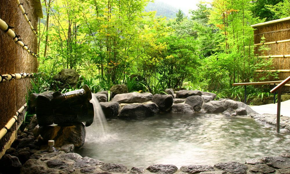 Japanese Spa garden - Google Search   Water Therapy   Pinterest   Spa