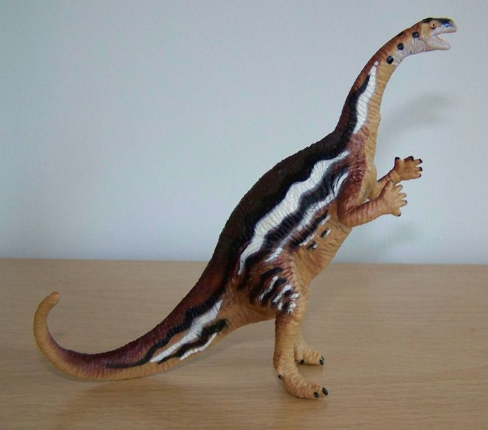 Plateosaurus was once thought to have been completely bipedal and was usually depicted striding boldly around on two hind legs. Today Plateosaurus is regarded as primarily quadrupedal with the possibility of rearing or running on two legs on occasion (the scientific term is 'facultative biped'). The Carnegie figure is standing proud on two feet so it is out of date in this regard, although it retains a certain nostalgic charm.