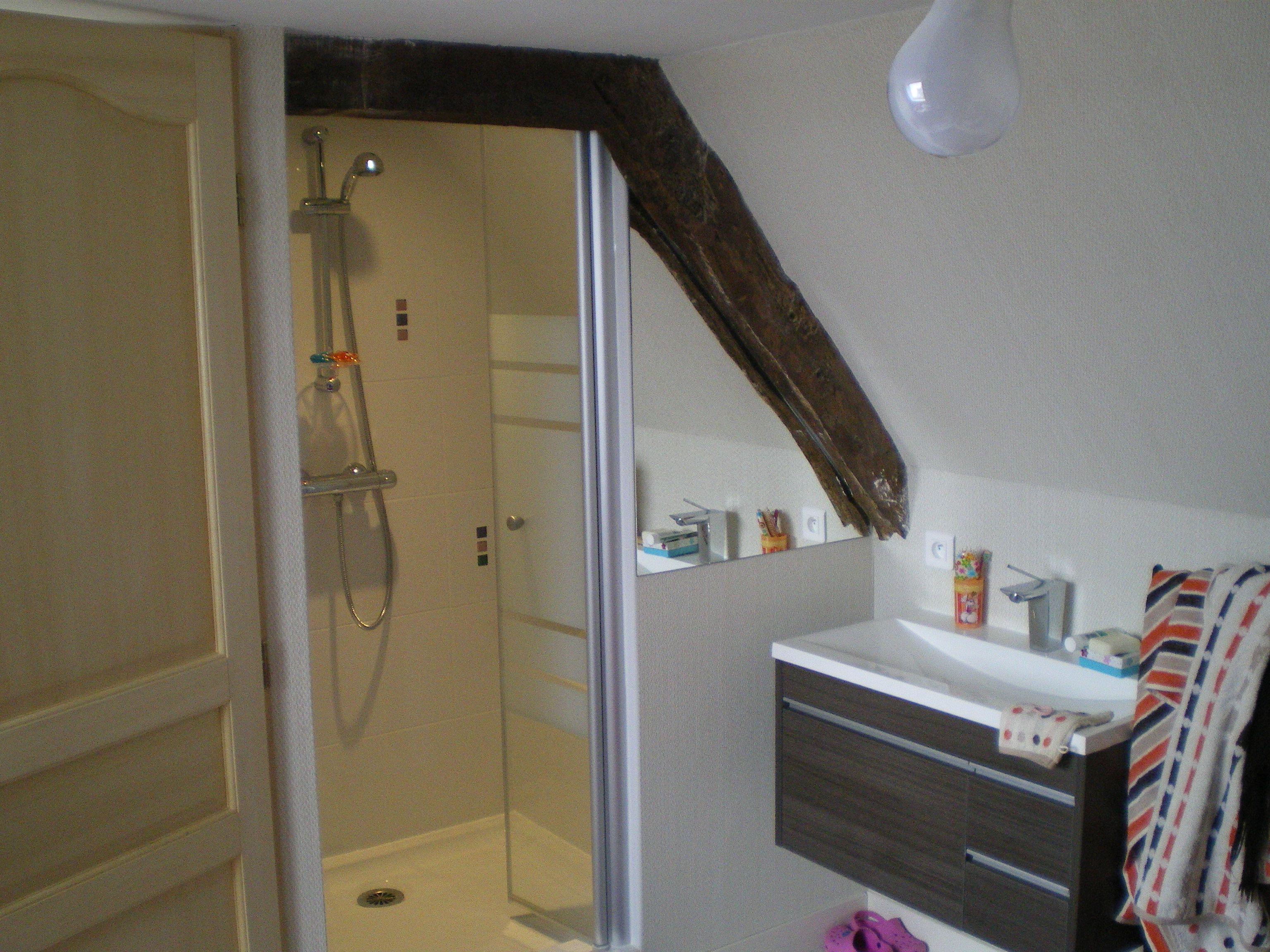 petite salle de bain combles travaux damenagement des combles france combles le mans devis. Black Bedroom Furniture Sets. Home Design Ideas