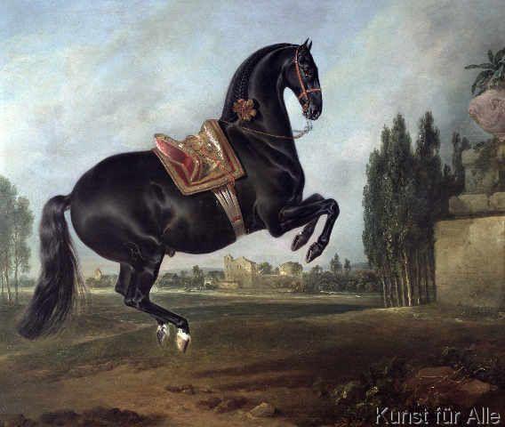 Johann Georg Hamilton - A black horse performing the Courbette