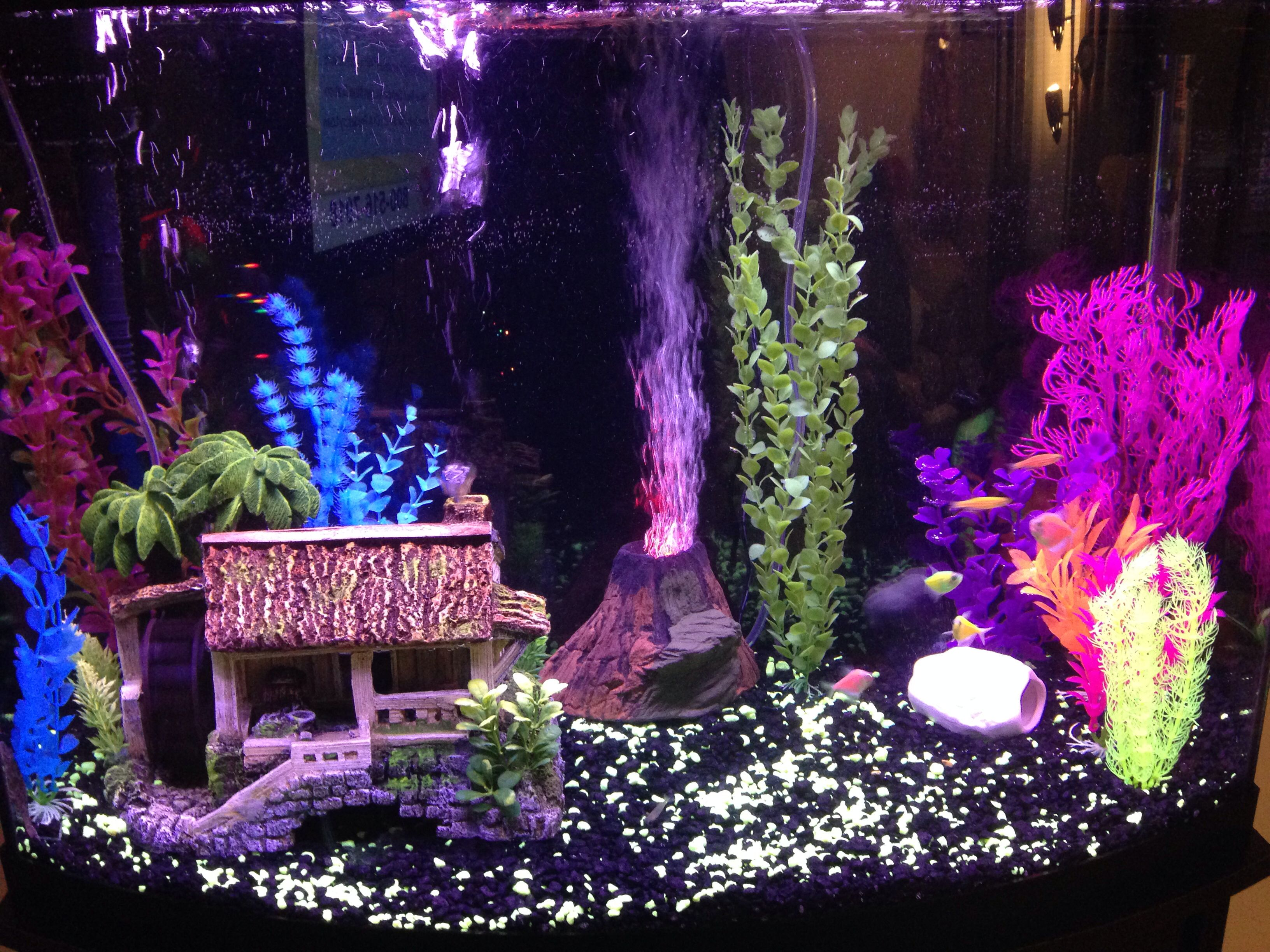 My new glo fish aquarium | Aquariums | Pinterest | Fish ...