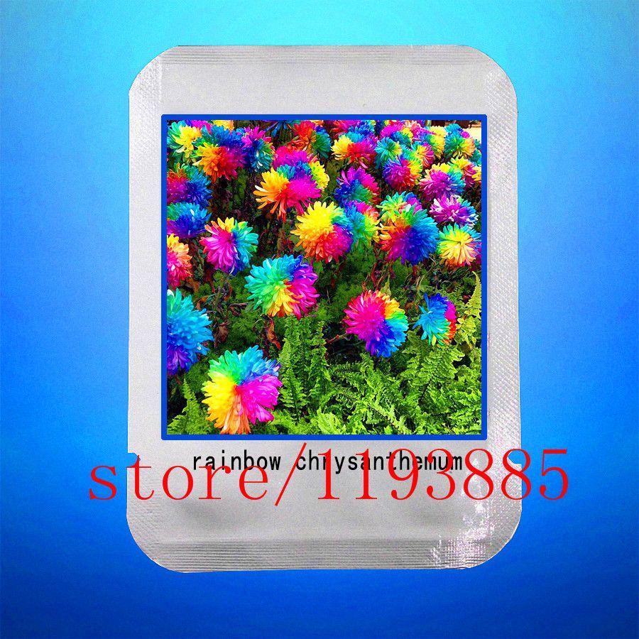 pcs bag fiber optic grass seed colours isolepis cernua