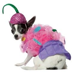 http://www.couplescostumescheap.com/category/pet-costumes. Puppy ala bourgeois costume.