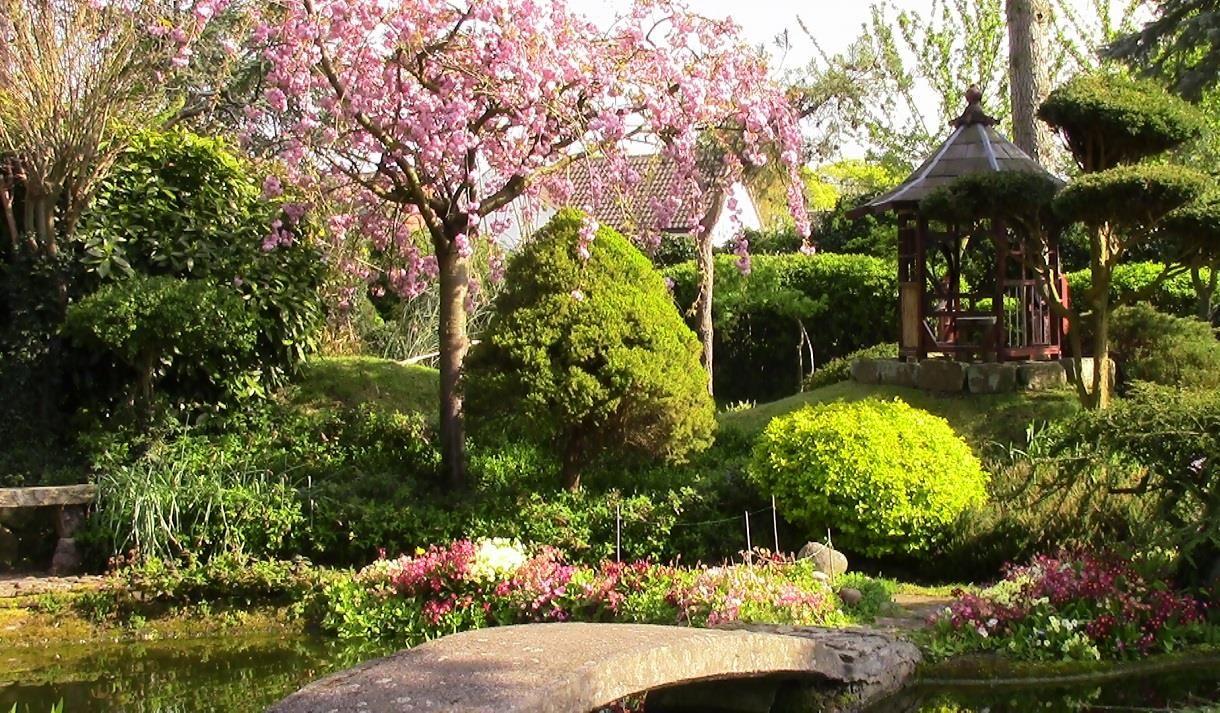 Pure Land Japanese Garden and Meditation Centre - Visit ...