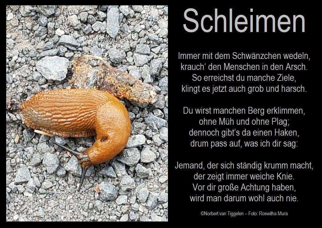 Haken-GedichteSchlagabting-Geschichten