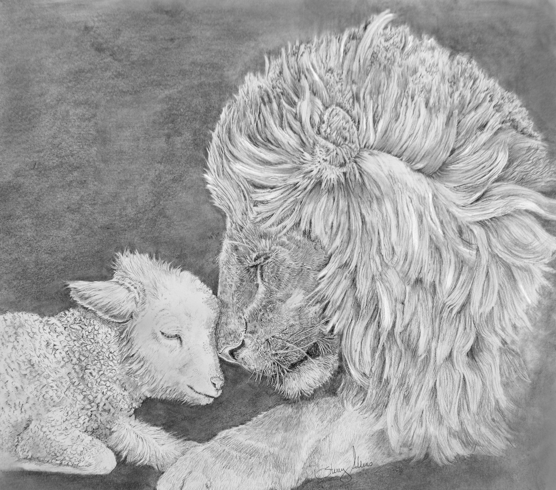 Lion And Lamb Pencil Drawing Print Christian Art Pastor