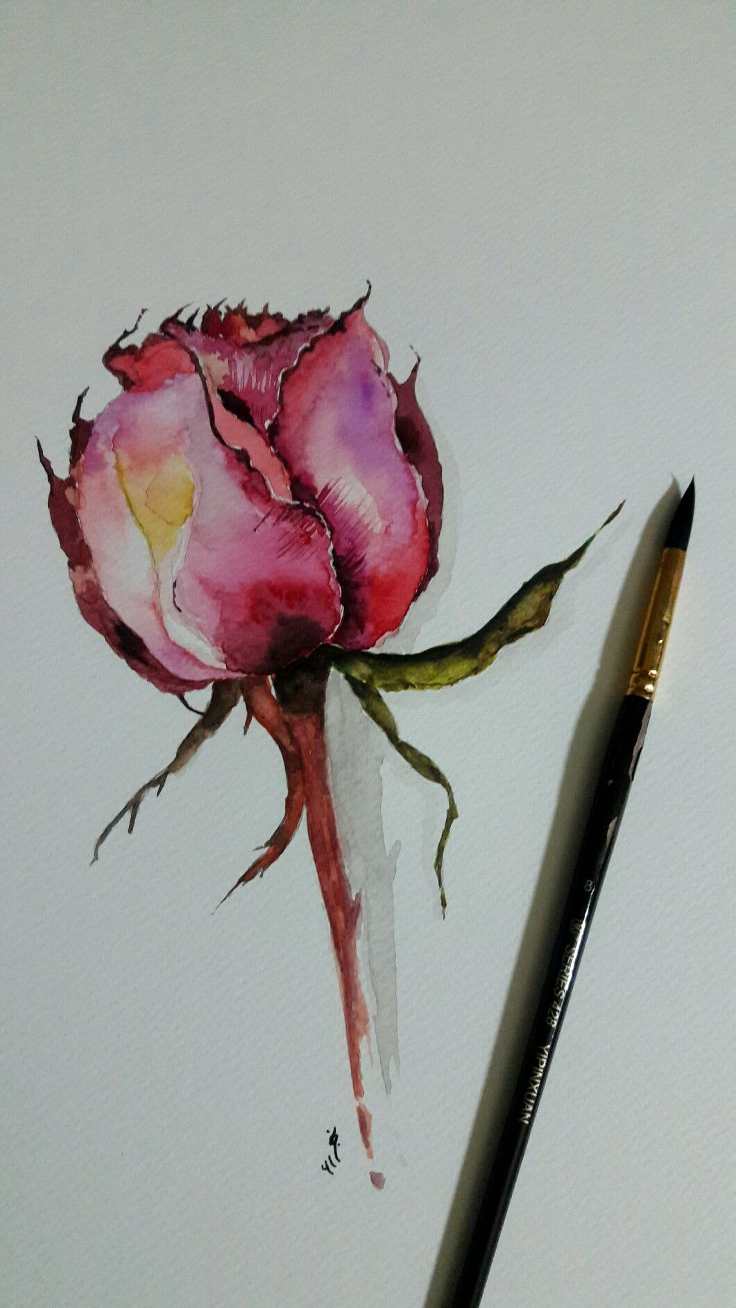 Pin By نجلاء حسين On رسمي Watercolor Paintings Drawings Color Blending