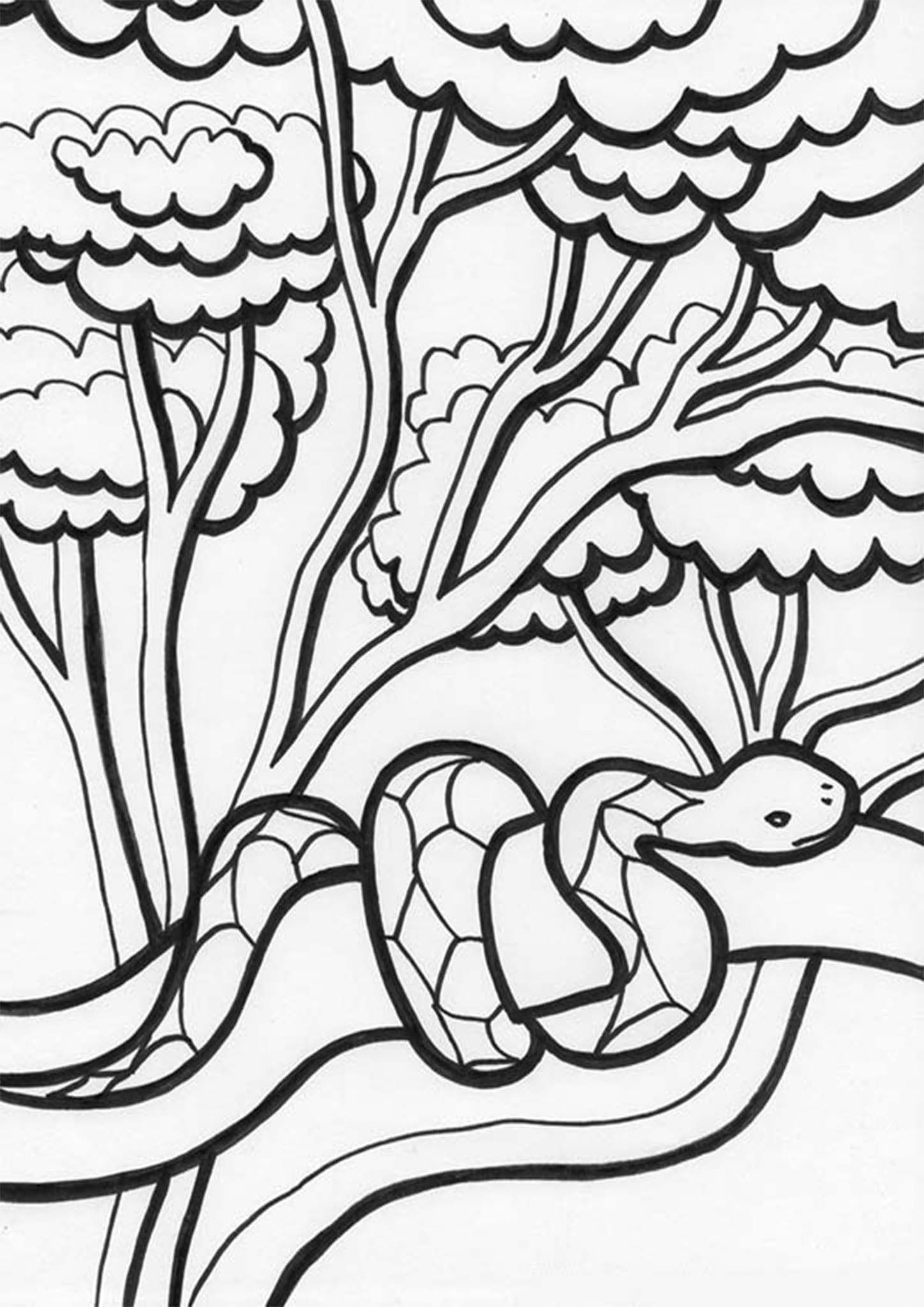 Free Easy To Print Snake Coloring Pages Snake Coloring Pages Animal Coloring Pages Tree Coloring Page