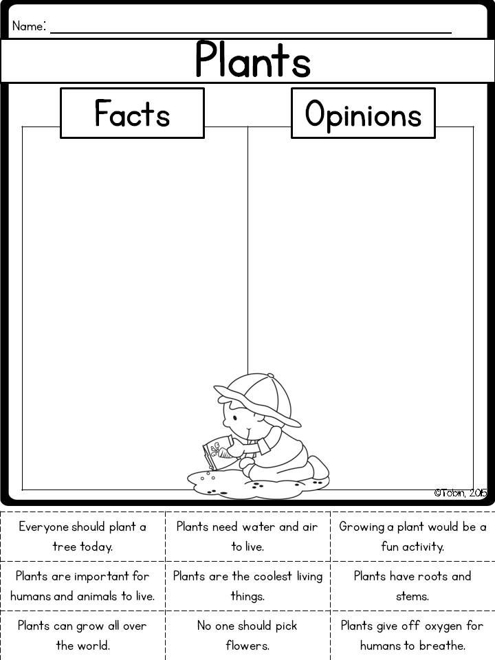 plants fact and opinion printable a kindergarten 1st grade tips lessons pinterest. Black Bedroom Furniture Sets. Home Design Ideas