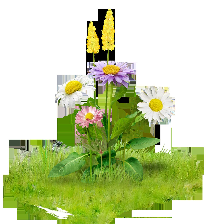 Hazel Harvey Hazelharveyxdu Cartoon Flowers Flowers Flower Painting