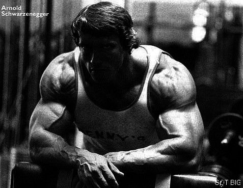 #weightschwarzenegger #schwarzenegger #schwarzeneg #neverending #unoarnold #expanding #possibly #mah...