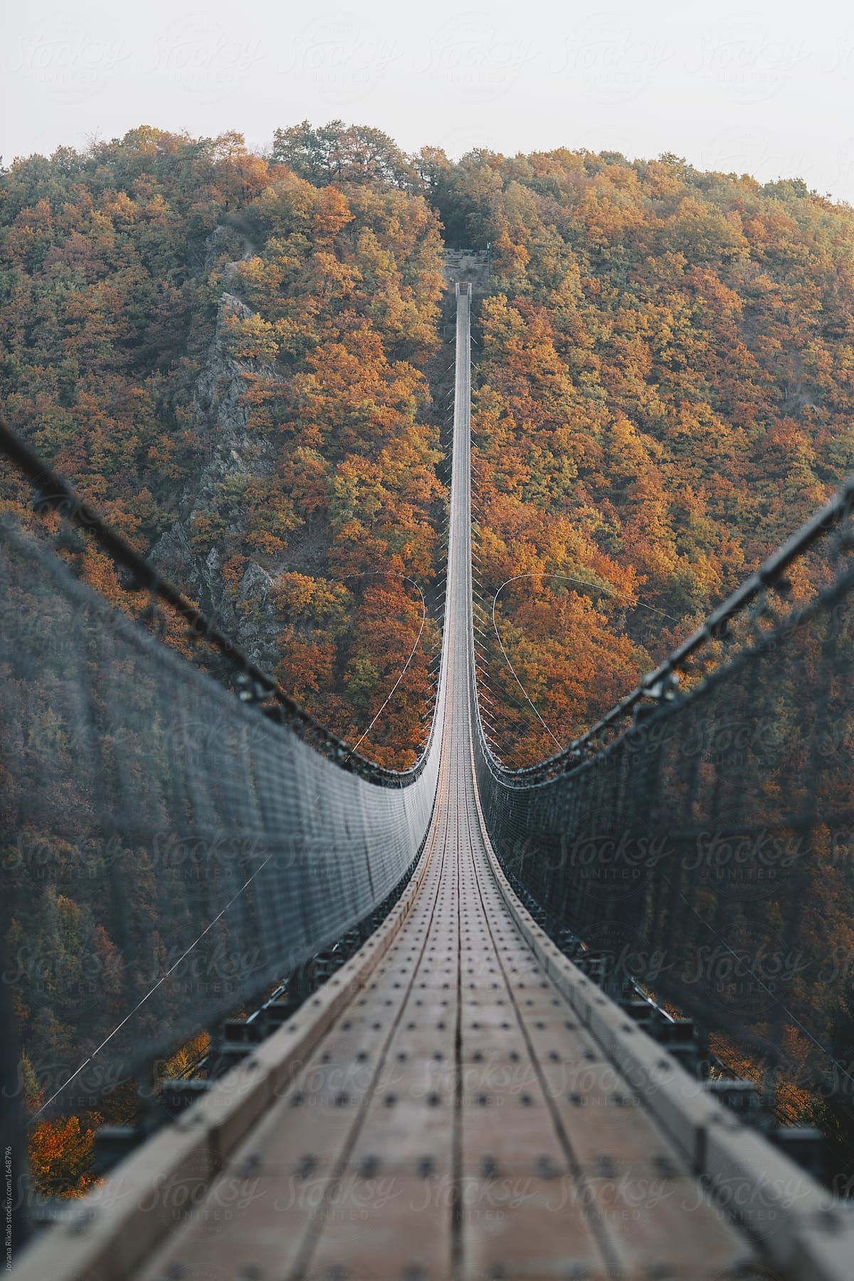 Bridge In The Middle Of Nature By Jovana Rikalo Autumn Bridge Stocksy United In 2020