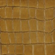"8"" x 8"" alligator decorative tile in almond"