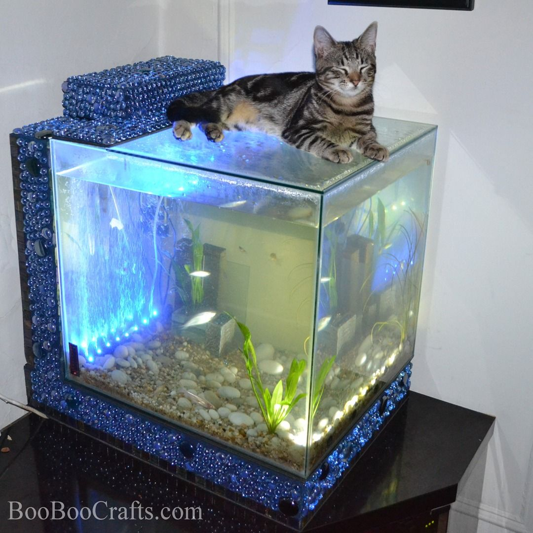 New Creation Of Oocrafts Custom Made Aquarium With Mosaic Stand Set Up All