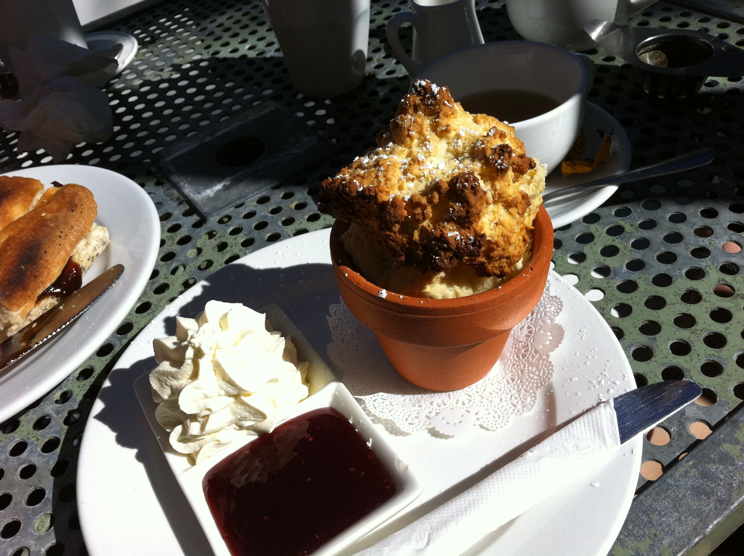 Flower Pot Scone from Wayzgoose cafe in Leura NSW Eat, Food