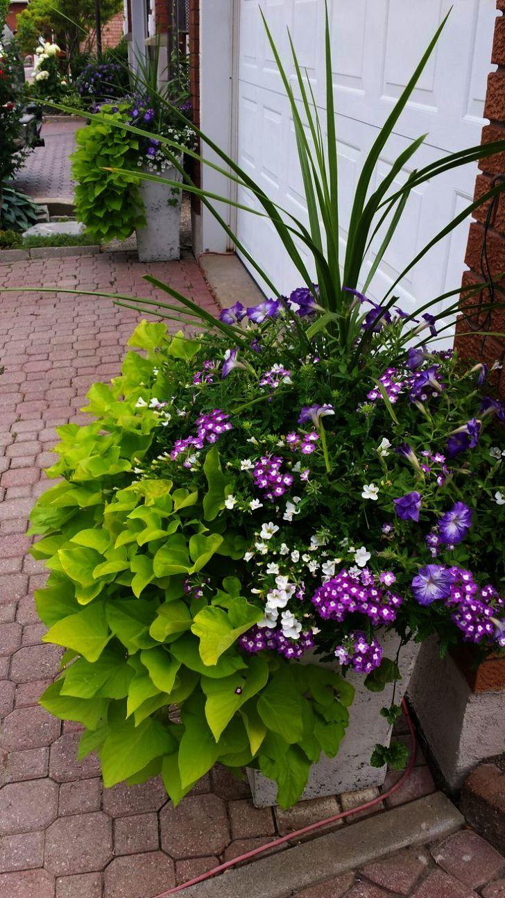 Gardening gifts for men than gardening gloves lowes