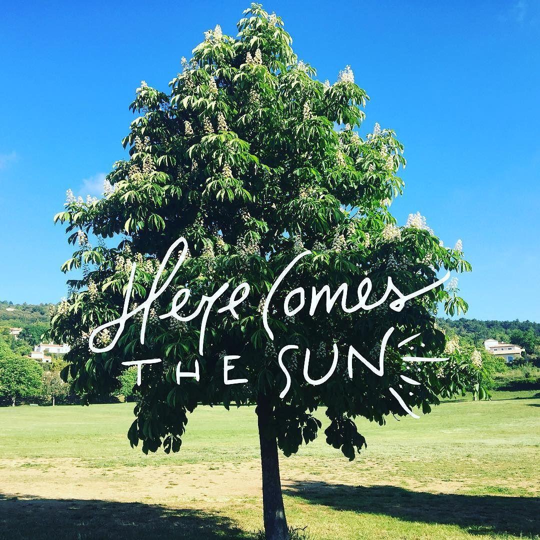 C'est lundi... Journée de solidarité... Certains bossent d'autres pas... Beau temps ici... La journée s'annonce belle! Bonne journée à tous  #journeedesolidarite #solidarite #pentecote #lundidepentecote #ferie #sun #sunny #sunnyday #good #goodlife http://themouse.org