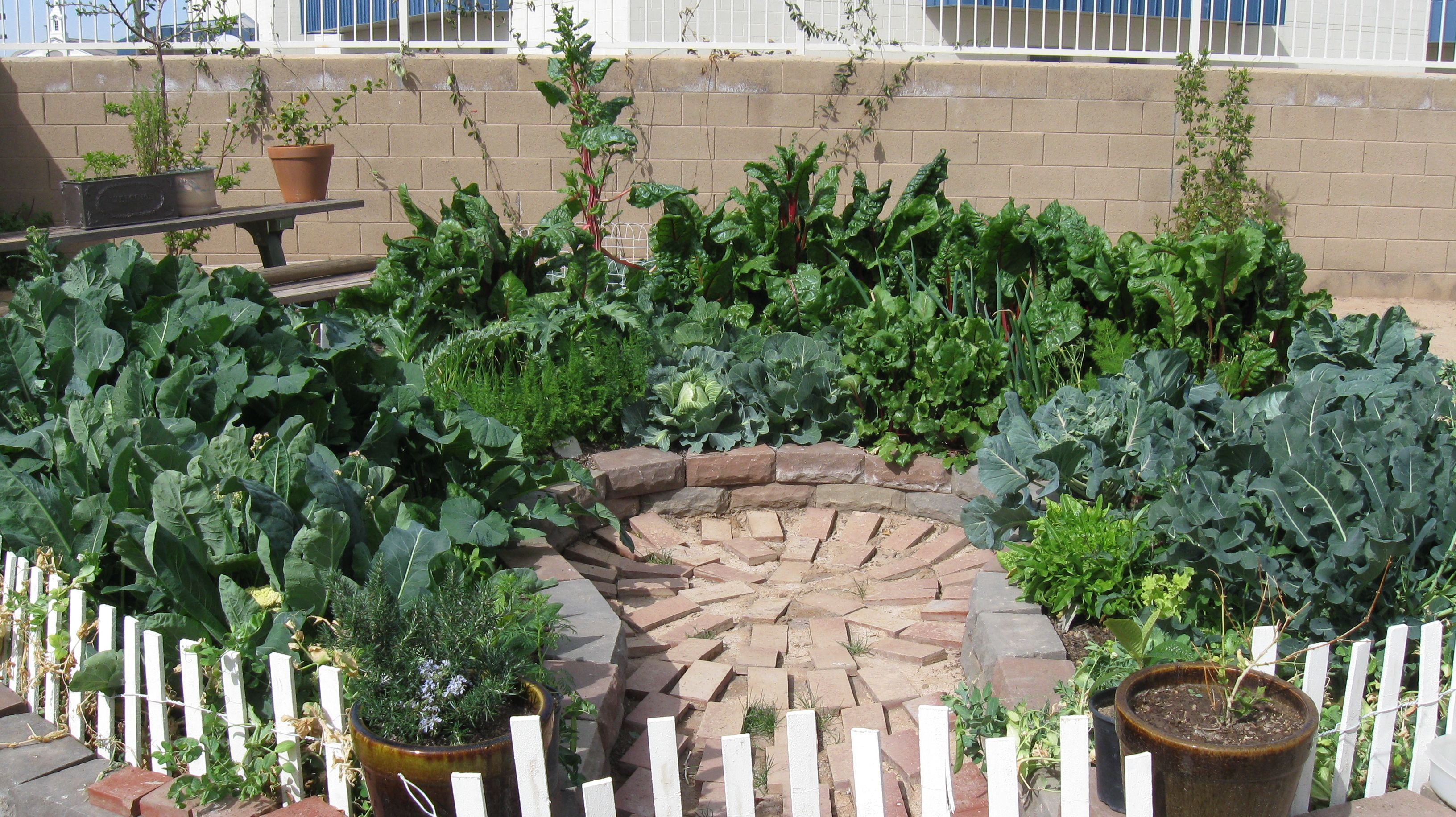 Back Yard Permaculture Gardening | Keyhole garden - Valley Permaculture Alliance