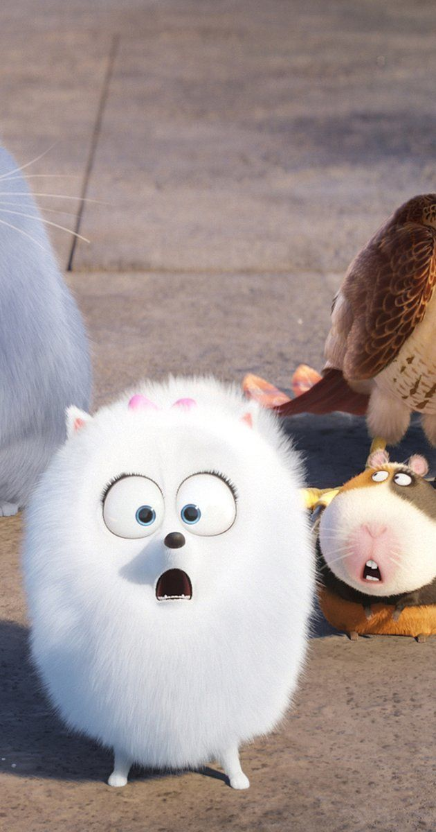 The Secret Life Of Pets Review Jack Fitzpatrick From The Moment