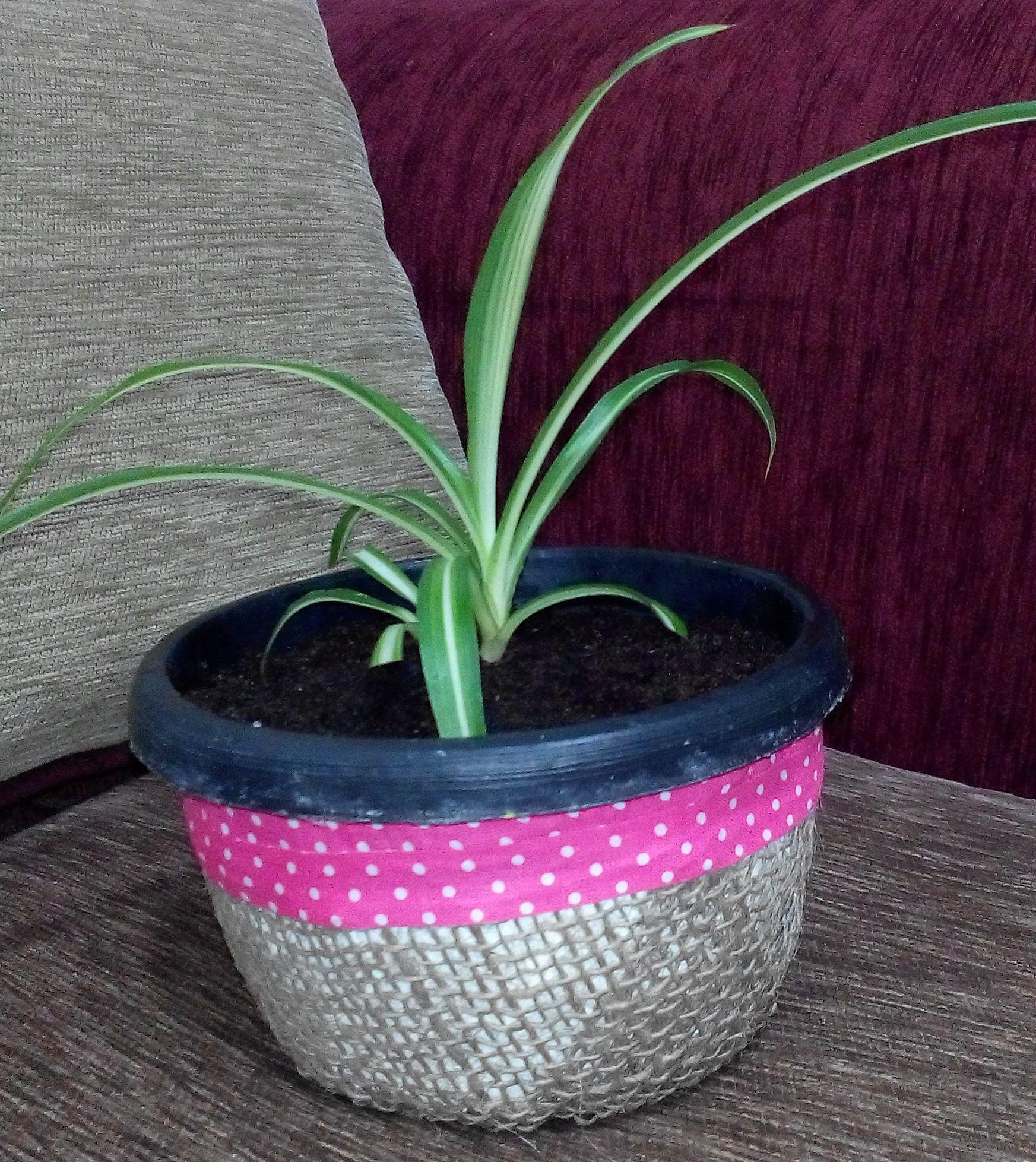 خيش و شريط قماش ملون لاصق نبات الفلانجيوم Plant Pot Burlap Spider Plant Planter Pots Planters Pot