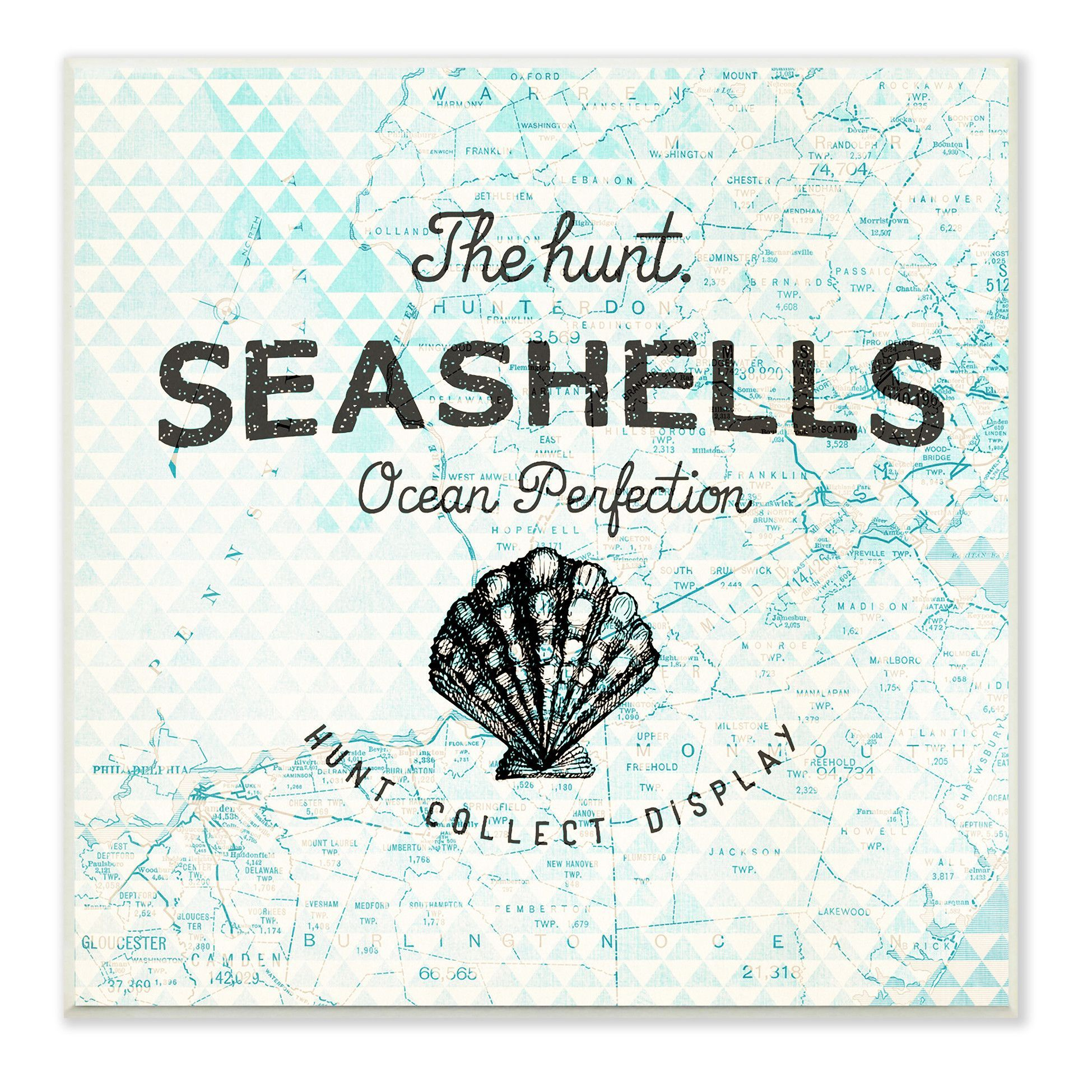 Seashells Hunt Collect Display With Scallop Shell Graphic Art Wall Plaque Wall Plaques Cherries Painting Seashell Wall Art
