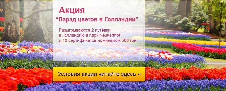 интернет магазины комнатных семян цветов почтой