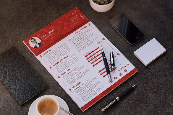 Professional Infographic Resume Template PSD Sample , Infographic