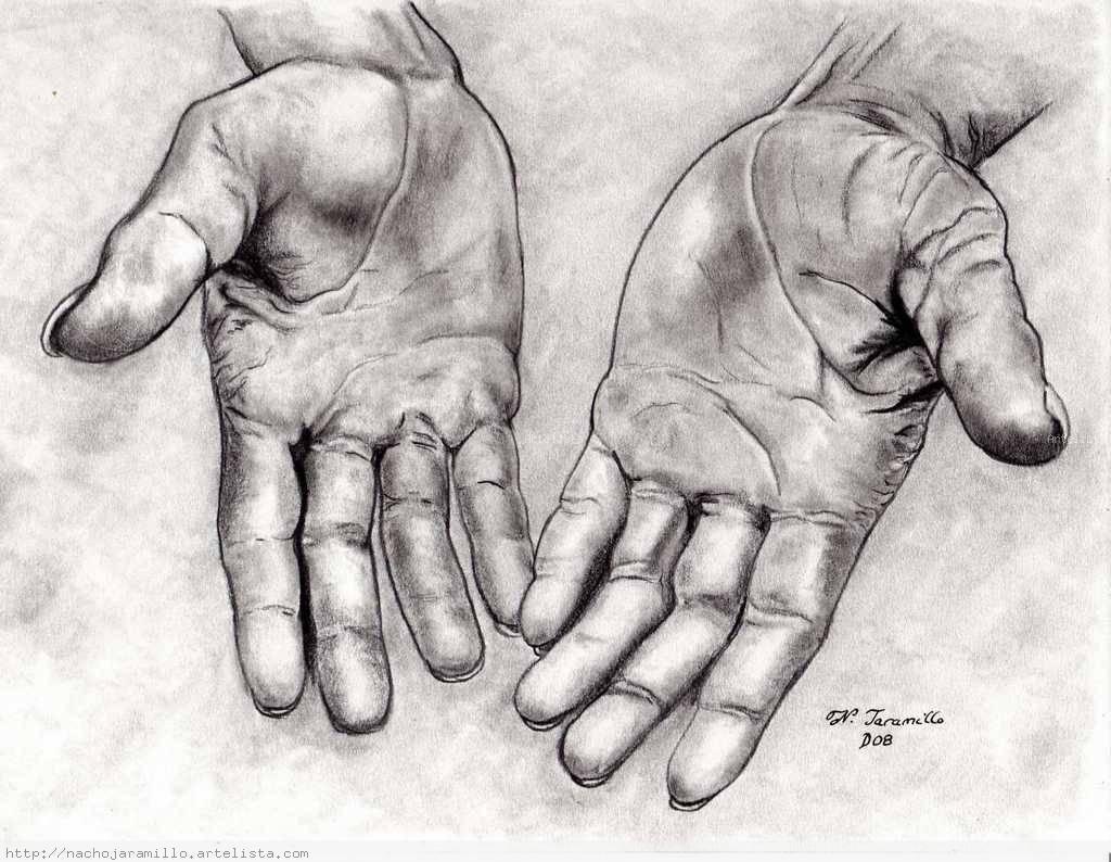 dibujos de manos  Buscar con Google  Manos  Pinterest  Dibujos