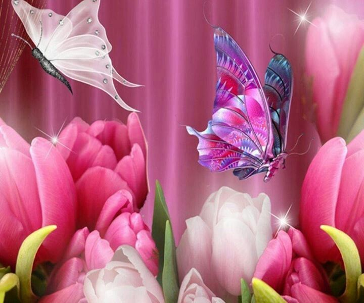 Pin by Mita Collazo on Butterfly Art and Photos | Tulip ...