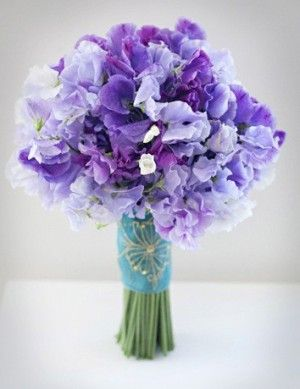 Friday Flowers Sweet Pea