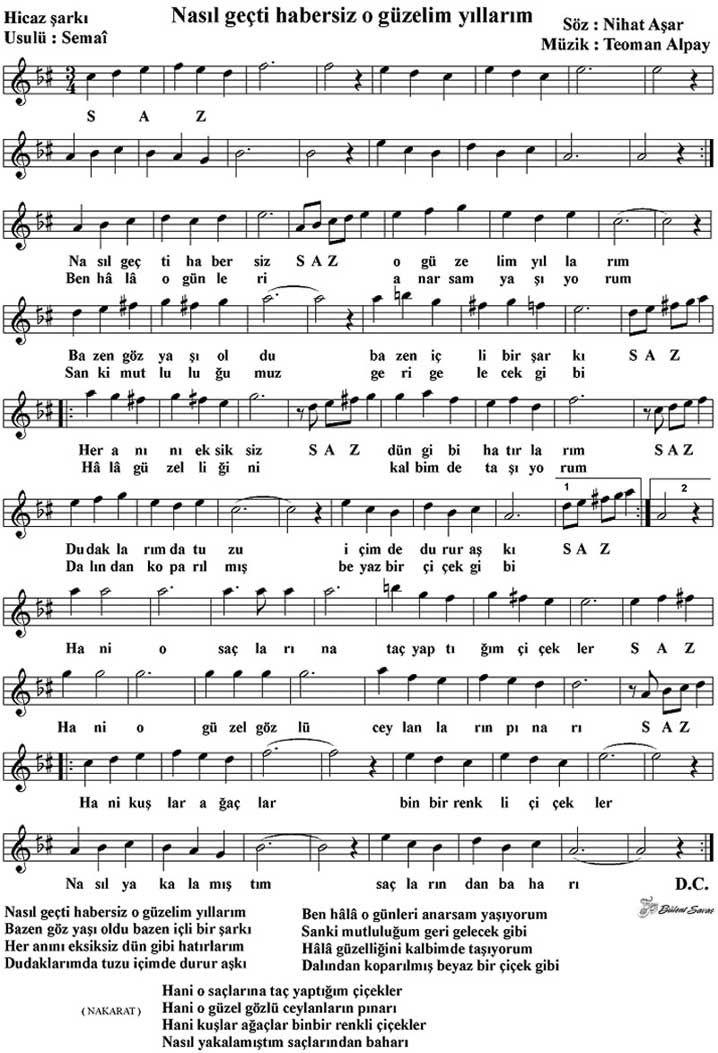 Nasil Gecti Habersiz Notalara Dokulmus Muzik Muzik Notalari