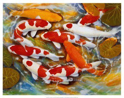 La leyenda de los peces koi s mbolo japon s de for Como criar peces koi