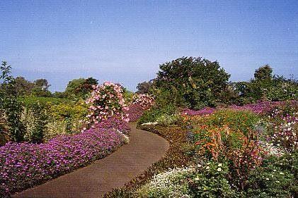 Enchanting Floral Gardens of Kula